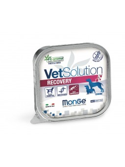 Vet Solution Recovery...